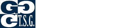 Táborské soukromé gymnázium a Základní škola, s. r. o.